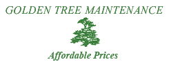 Golden Tree Maintenance and Tree Services